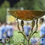 foto copa campeones