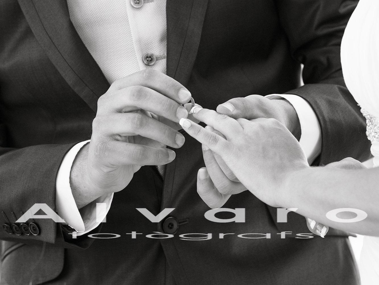 casamiento novios