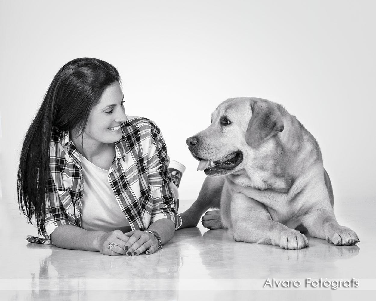 foto perro2