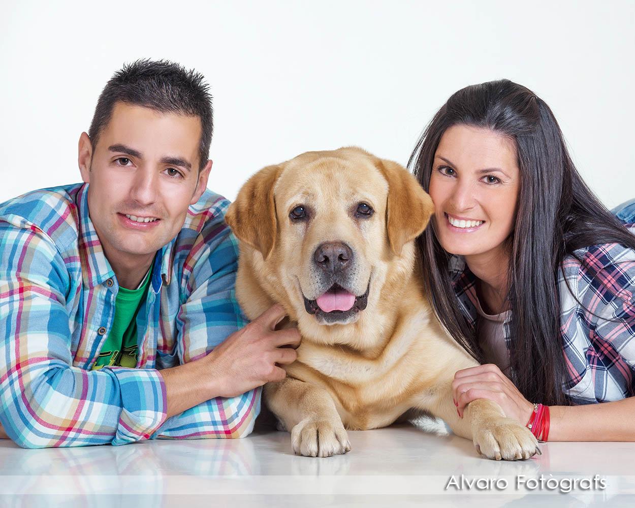 foto perro3